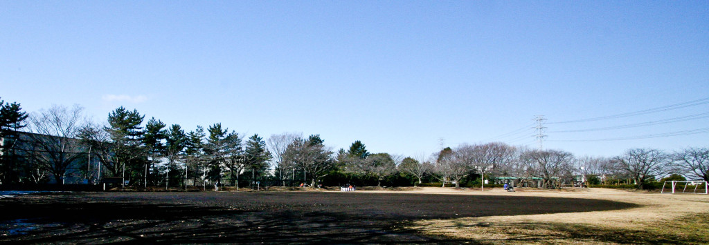 冬の諏訪南公園