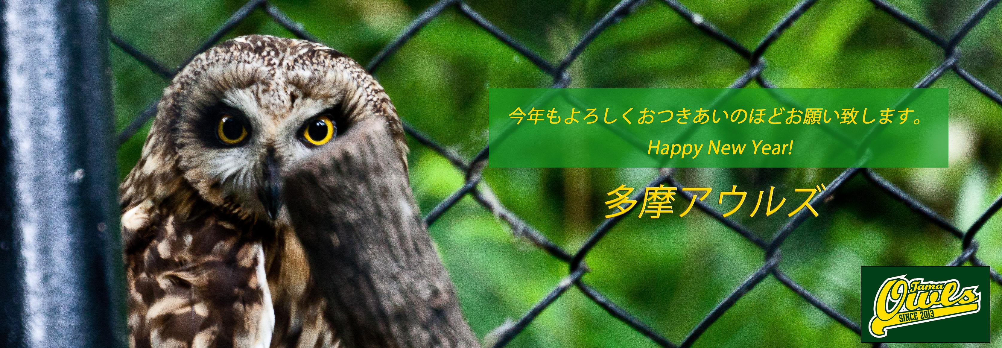 20130723-OwlsCover